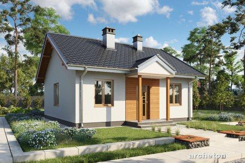 Проект дома Миниатура